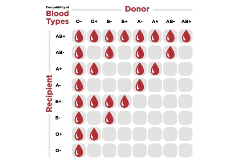انواع فصائل الدم النادرة المرسال