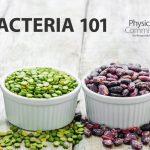 الاطعمة التي تغذي البكتيريا النافعة