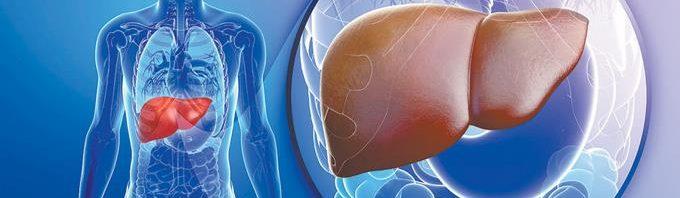 هل يحتاج تحليل وظائف الكبد للصيام ؟ %D8%AA%D8%AD%D9%84%D9%8A%D9%84-%D9%88%D8%B8%D8%A7%D8%A6%D9%81-%D8%A7%D9%84%D9%83%D8%A8%D8%AF-680x198