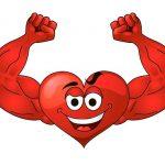 كيف يمكن تقوية عضلة القلب