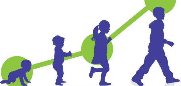 كتاب مراحل نمو الجنين pdf
