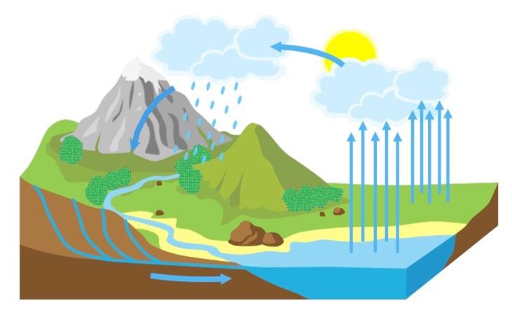 مراحل دورة الماء في الطبيعة بالصور المرسال