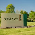 معلومات عن شركة مونسانتو