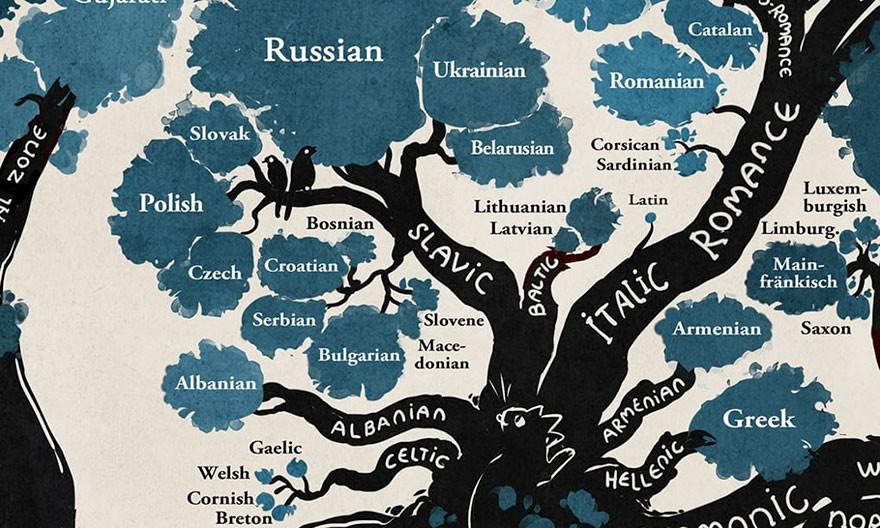 شجرة اللغات الهندو أوروبية ترتيب-اللغ�