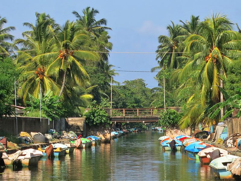الاماكن السياحية نقمبو بسريلانكا نقمبو-سريل�