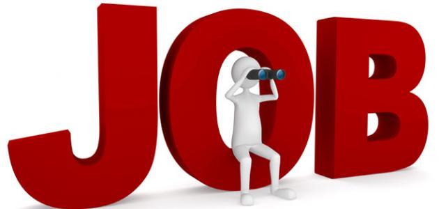 بحث عن مهارات البحث عن وظيفة المرسال