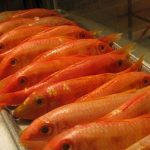 فوائد سمك البربون