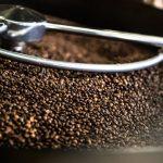 درجات تحميص القهوة بالصور