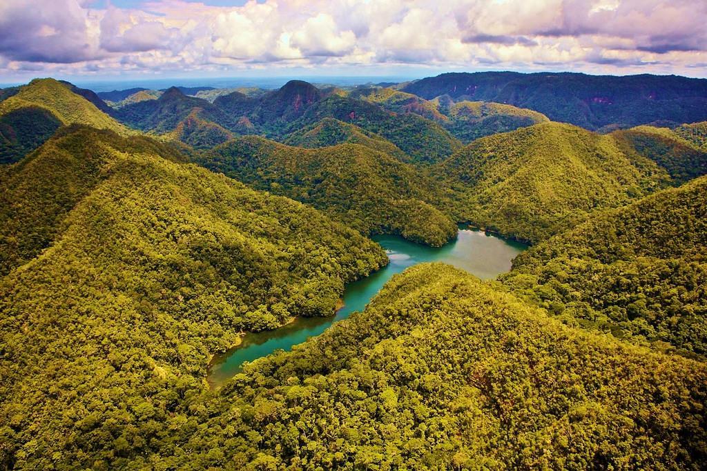 السياحة غابات الامازون