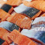 افضل سمك سلمون
