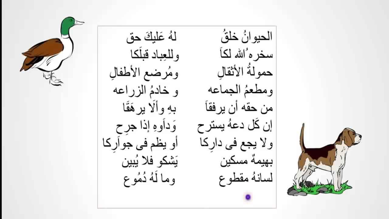 شعر عن الطفولة لاحمد شوقي المرسال