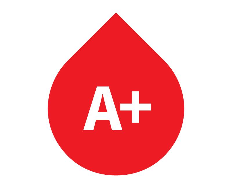 الاكل اللي يسمن فصيلة دم A المرسال