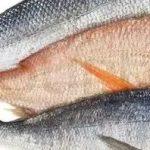 تفسير حلم السمك النيء الفاسد
