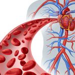 علامات هبوط الدورة الدموية