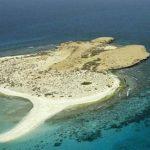 بحث عن جزيرة فرسان عربي - انجليزي