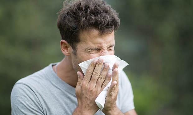 علاج الجيوب الأنفية بالأعشاب | المرسال