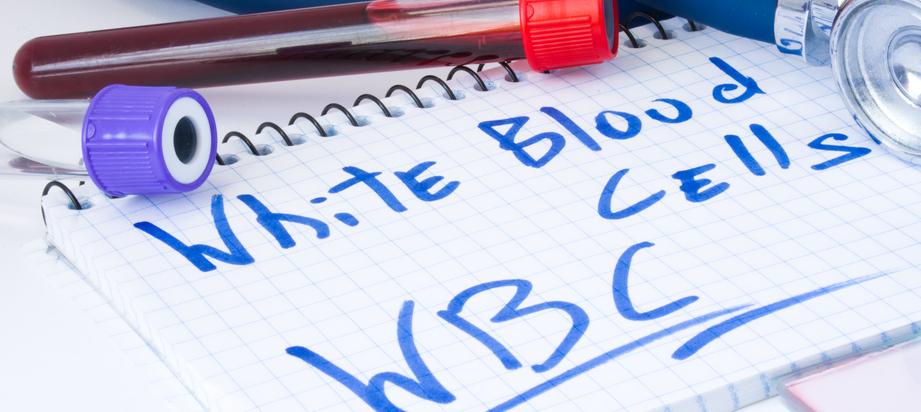 ما هو تحليل Wbc المرسال