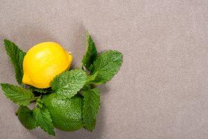 نعناع الليمون
