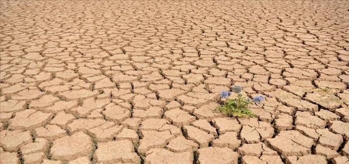 اكثر الدول جفافًا العالم